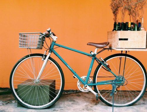 Bicicletta con vini